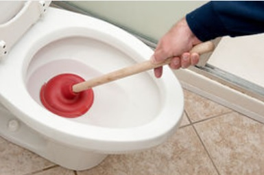how to use a plunger to unblock a toilet