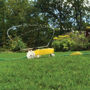 Guide to watering your lawn